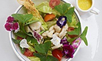 Salada de Trevinho